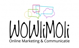 logo-wowlimoli-onlinemarketing